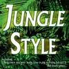 Couverture de l'album Jungle Style