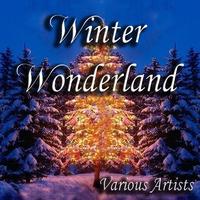 Couverture du titre Winter Wonderland