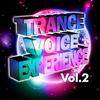 Cover of the album Trance Voices, Volume 24