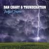 Couverture de l'album Perfect Storm