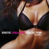 Cover of the album Erotic Chill Out Collection, Vol. 6