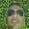 Cover of the album Bonk Rock