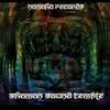 Couverture de l'album Shaman Sound Temple