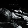 Couverture de l'album Silent Rider