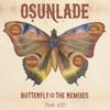 Couverture de l'album Butterfly (The Remixes) - EP