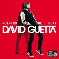 Couverture du titre Nothing but the Beat