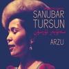 Couverture de l'album Arzu (Songs of the Uyghurs)