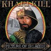 Couverture de l'album Picture of Selassie