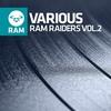 Cover of the album Ram Raiders, Vol. 2
