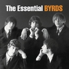 Couverture de l'album The Essential Byrds