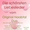 Couverture de l'album Die schönsten Liebeslieder vom Original Naabtal Duo