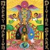 Cover of the album Divine Spark