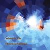 Couverture de l'album Wheel of Life