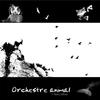 Couverture de l'album Orchestre animal