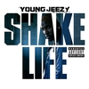 Cover of the track Shake Life