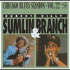 Cover of the album Chicago Blues Session, Vol. 22