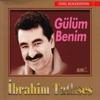 Cover of the album Gülüm Benim