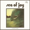 Cover of the album Sea of Joy (The Music from the Film by Paul Witzig) [Original Motion Picture Soundtrack]