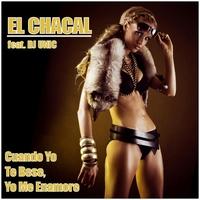 Couverture du titre Cuando Yo Te Bese, Yo Me Enamoré (feat. Dj Unic) - Single