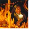 Couverture de l'album Feed the Fire