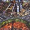 Couverture de l'album Leaf Spring