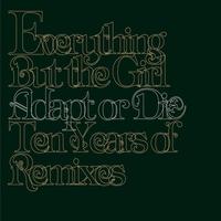Couverture du titre Adapt or Die: Ten Years of Remixes