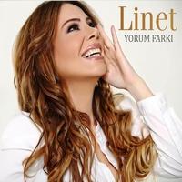 Cover of the track Yorum Farkı