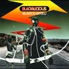 Couverture de l'album Blazing Arrow
