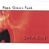 Cover of the album Shakin'