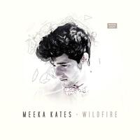 Couverture du titre Wildfire - EP