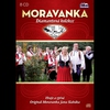 Cover of the track Javorina (Valčík)