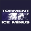 Cover of the track Torment
