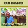 Couverture de l'album Trenchtown Experience