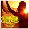 Couverture de l'album Summer Grooves (Volume Miami)