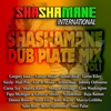 Cover of the album Shashamane Dub Plate Mix, Vol. 1 (Shashamane International Presents)