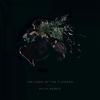 Couverture de l'album The Code of the Flowers