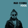 Couverture de l'album Fool