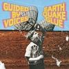 Couverture de l'album Earthquake Glue