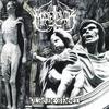 Couverture de l'album Plague Angel