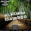 Cover of the album Bamboo EP