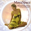 Cover of the track Mool Mantra