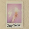 Couverture de l'album Cheap Thrills - Single