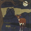 Cover of the album Deer in the Night