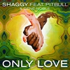 Cover of the track Only Love (feat. Pitbull & Gene Noble)