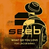 Cover of the album What Do You Love (feat. Jacob Banks) - Single