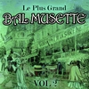 Couverture de l'album Le plus grand bal musette, Vol. 2