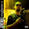 Couverture de l'album Cocky and Confident (Deluxe Version)
