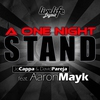 Couverture du titre A One Night Stand (Radio Edit)