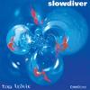 Cover of the album Slowdiver
