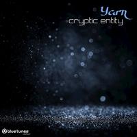 Couverture du titre Cryptic Entity